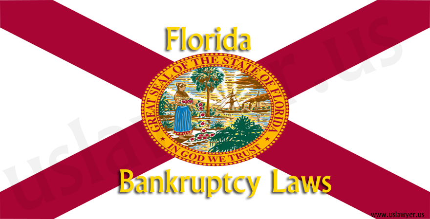 Florida bankruptcy cases