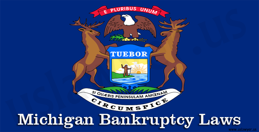 Michigan Bankruptcy Laws