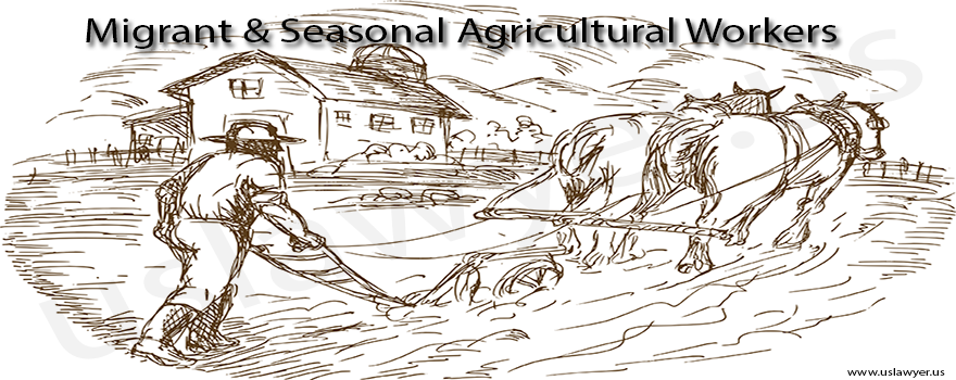 Migrant & Seasonal Agricultural Workers