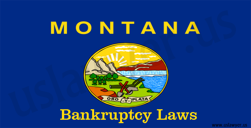 Montana Bankruptcy Laws