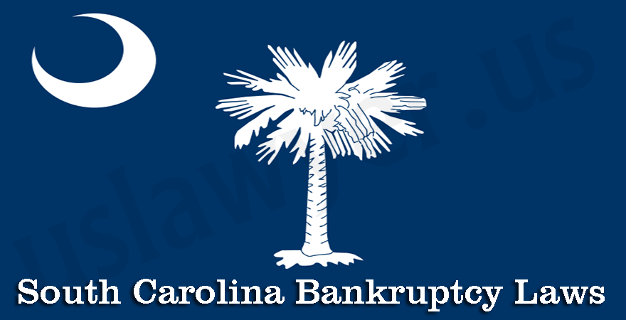 South Carolina Bankruptcy Laws