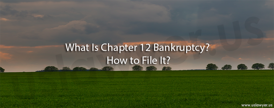 What Is Chapter 12 Bankruptcy